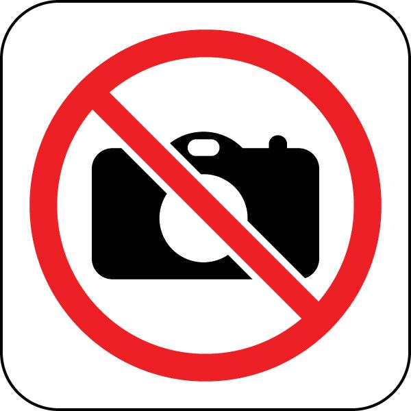 Softub Whirlpool Modell Resort 300 inkl kpl Poly Rattanumrandung white chocolate